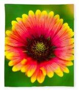 Beautiful Daisy Fleece Blanket