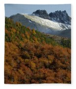 Beech Forest, Chile Fleece Blanket