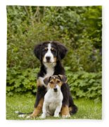Bernese Mountain & Jack Russell Puppies Fleece Blanket