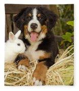 Bernese Mountain Puppy And Rabbit Fleece Blanket