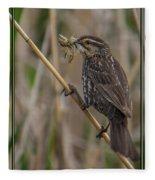 Big Dinner For Female Red Winged Blackbird I Fleece Blanket