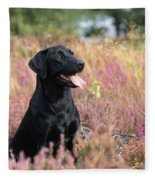 Black Labrador Dog Fleece Blanket