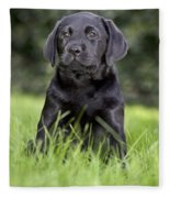 Black Labrador Puppy Fleece Blanket