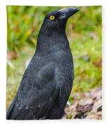 Black Tasmanian Crow Standing In Green Forest Fleece Blanket