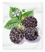 Artz Vitamins Series The Blackberries Fleece Blanket