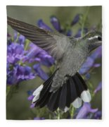 Blue-throated Hummingbird Fleece Blanket