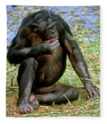 Bonobo Fleece Blanket