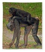 Bonobos Fleece Blanket