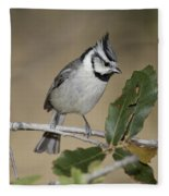Bridled Titmouse Fleece Blanket
