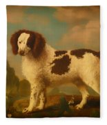 Brown And White Norfolk Or Water Spaniel Fleece Blanket