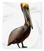 Brown Pelican-7 Fleece Blanket