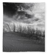Bruneau Dunes State Park Idaho Fleece Blanket