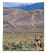 Buck At Great Sand Dunes Fleece Blanket