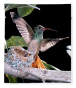 Buff-bellied Hummingbird At Nest Fleece Blanket