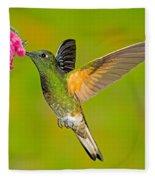 Buff-tailed Coronet Hummingbird Fleece Blanket