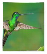 Buff-winged Starfrontlet Fleece Blanket