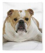 Bulldog, Female Fleece Blanket