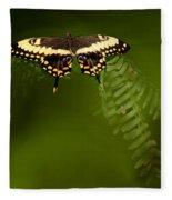 Butterfly Fleece Blanket