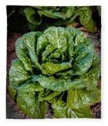 Butterhead Lettuce Fleece Blanket