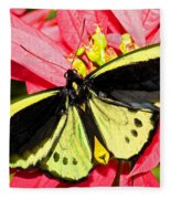 Cairns Birdwing Butterfly Fleece Blanket