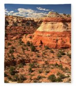 Calf Creek Canyon Red Rocks Fleece Blanket