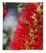 Callistemon Citrinus - Crimson Bottlebrush Fleece Blanket