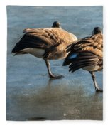 Canada Geese At Rest Fleece Blanket