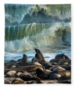 Cape Fur Seals Arctocephalus Pusillus Fleece Blanket