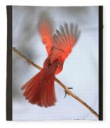 Cardinal Launch Fleece Blanket