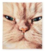 Cat Face Close Up Portrait Fleece Blanket