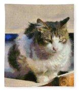 Cat On Chair Fleece Blanket