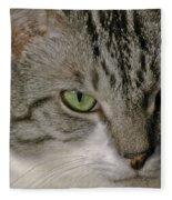 Catitude Fleece Blanket