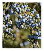 Cedar Blue Fleece Blanket