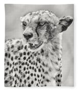 Cheetah Fleece Blanket