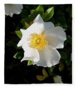Cherokee Rose Fleece Blanket