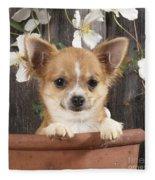 Chihuahua Dog In Flowerpot Fleece Blanket