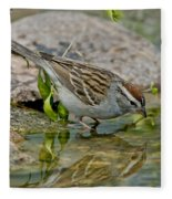 Chipping Sparrow Fleece Blanket