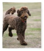 Chocolate Labradoodle Running In Field Fleece Blanket