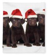 Chocolate Labrador Puppies Fleece Blanket