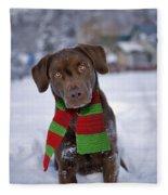 Chocolate Labrador Retriever Fleece Blanket