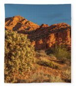 Cholla Cactus And Red Rocks At Sunrise Fleece Blanket