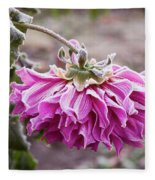 Close-up Of Flowers Covered By Frost Fleece Blanket