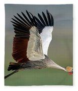 Close-up Of Grey Crowned Crane Fleece Blanket