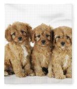 Cockapoo Puppy Dogs Fleece Blanket