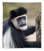 Colobus Monkey Fleece Blanket