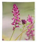Common Fumitory Fleece Blanket