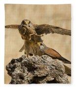 Common Kestrel Falco Tinnunculus Fleece Blanket