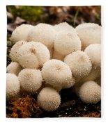 Common Puffball Mushrooms Lycoperdon Perlatum Fleece Blanket