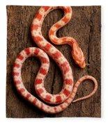 Corn Snake P. Guttatus On Tree Bark Fleece Blanket