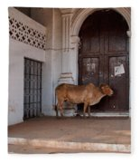 Cow At Church At Colva Fleece Blanket